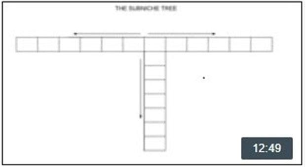 The Subniche Tree Presentation